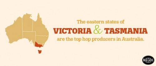 australian hop producers